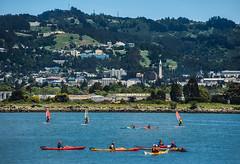 cal kayak and surf (pbo31) Tags: california blue color green water marina training campus bay berkeley spring nikon kayak cal bayarea april roll eastbay recreation watersports alamedacounty classes universityofcalifornia 2016 boury pbo31 d810