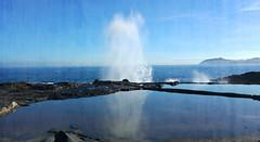 Salinas del Bufadero. Baaderos. Gran Canaria (Montse;-))) Tags: sea grancanaria mar salt salinas sal rocas reflejos endemismo etnografa baaderos