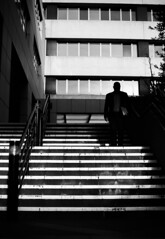 (paralelsuns85) Tags: street shadow people blackandwhite bw man building male monochrome lines stairs canon blackwhite candid streetphotography business suit canonef50mmf14usm canon6d
