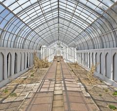 Trumbauer Gardens (Jonnie Lynn Lace) Tags: abandoned ruins decay greenhouse peelingpaint decaying modernruins abandonedgreenhouse trumbauer chasinglight indopersian abandonedamerica