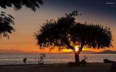 Nascendo o Sol em Paquet (mariohowat) Tags: brazil sun brasil riodejaneiro sunrise natureza paquet amanhecer nascerdosol ilhadepaquet