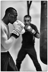 The Champ  II (johann walter bantz) Tags: black paris monochrome training blackwhite europe 85mm boxer boxing 93 boxe banlieue pantin nikond4s saledeboxe