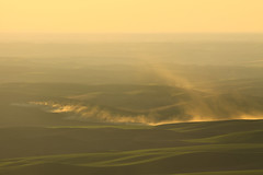 Tilling Fields (Matthew Singer) Tags: washington unitedstates garfield palouse steptoebutte