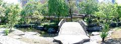 #7958 panorama: shrine garden (Nemo's great uncle) Tags: autostitch panorama garden  yushima  tky   bunkyku yushimatenji