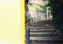 0001 (miyo*) Tags: film 50mm olympus om1