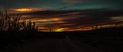 Sunset in Sebgag (Lil d'un Naturaliste) Tags: algeria algrie  aflou sebgag laghouat