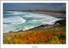 Atlantic Rollers At Fistral (flatfoot471) Tags: ocean summer england holiday plant beach landscape coast cornwall unitedkingdom newquay normal fistral 2015