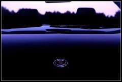 SAAB_Badge (W. Daelmans) Tags: black car convertible 93 saab scania