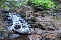 Waterfall (pburka) Tags: hawaii waterfall kauai queensbath