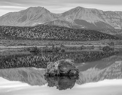 Small Tufa in Mono Lake (jwsmithphoto) Tags: mountain lake snow reflections monolake sierranevada tufas