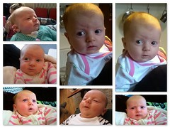 Weighing up the world... (Mike-Lee) Tags: baby girl collage picasa grandparents tomel dec2015 elizabethrosalee 8thdec2015 6lb9ozor314kg