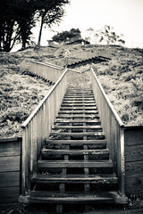 descent (sebboh) Tags: sanfrancisco stairs cityscape hill toned grandviewpark sonyrx1 carlzeiss35mmf2sonnar