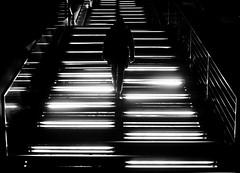 untiteld.jpg (Mette1977) Tags: street city light people bw monochrome lines silhouette hamburg streetphotography olympus treppe hafen elbe dockland 2016 17mm microfourthird omdem10ii