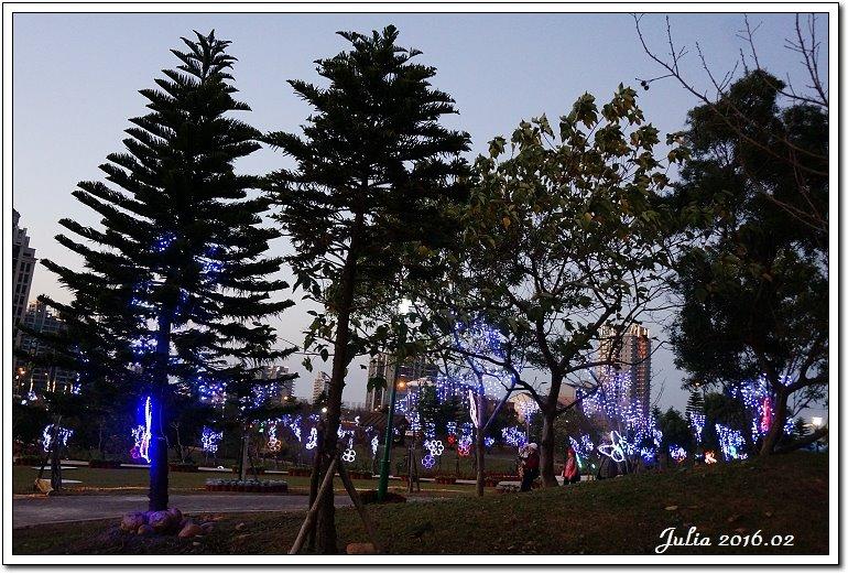 台灣燈會 (10)