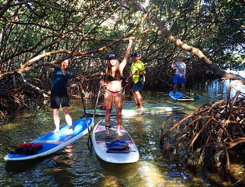 2_17_16 Kayak Paddleboard Tour Sarasota FL 15