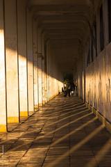 Puerto Varas (Alvaro Lovazzano) Tags: chile puertovaras atardecer estaciondetren graffiti cili cile 700d t5i canon tramonto sunset estacin tren abandono pasillo sombra ombra shadows rayado pilar pilares columna