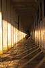 Puerto Varas (Alvaro Lovazzano) Tags: chile puertovaras atardecer estaciondetren graffiti cili cile 700d t5i canon tramonto sunset estación tren abandono pasillo sombra ombra shadows rayado pilar pilares columna