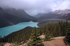 Peyto Lake Rainbow (rob gosse) Tags: rainbow alberta banff peyto