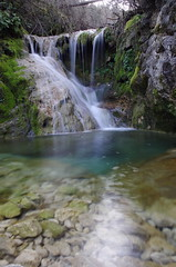 waterfall (SS) Tags: italy plant nature colors forest moss long exposure pentax lazio k5 verticalformat monteguadagnolo smcpentaxda1855mmf3556alwr ss
