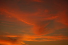 Just Sky [Explore 04/03/16] (Alvin Harp) Tags: california sunset orange abstract clouds september 2012 ripon nex wispyclouds teamsony nex5 nex5n alvinharp