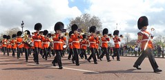 band of the grenadier guards /15/04/2016/ (philipbisset275) Tags: unitedkingdom victoriamemorial centrallondon cityofwestminster englandgreatbritain bandofthegrendiearguards 15042016