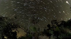 Araku Star Trails (dr a k) Tags: night stars trails planet jupiter astrophoto araku visakhapatnam arakuvalley vizagandhrapradeshindianature