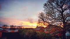 Beautiful sunset tonight over the Staffordshire Moorlands!  #werrington #staffordshire #staffordshiremoorlands #sunset #sun #sky #clouds #tree #view #rooftops #spring (Raven Photography by Jenna Goodwin) Tags: sunset sky sun tree clouds spring view rooftops staffordshire werrington staffordshiremoorlands