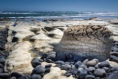 Brainstone (loveexploring) Tags: sea newzealand seascape beach rock landscape wave pacificocean limestone southisland tasmansea westcoast rockformation paturau