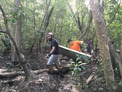 16-Env&CivSoc-World-Water-Day-LCK-Cleanup-26Mar16 (Habitatnews) Tags: mangrove capt nus worldwaterday limchukang iccs
