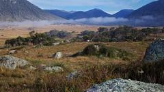Foggy morning (Geoff Main) Tags: mountain fog landscape nationalpark rocks australia grassland act rockformations canonef24105mmf4lisusm namadginationalpark canon6d