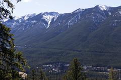Banff, Tunnel Mountain Hike, April 9 2016 (4)_e_apr_11_16 (Velates) Tags: canada mountains alberta rockymountains banffnationalpark