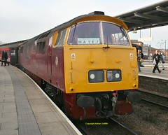 D1015 at Derby 2016 (Ado Griff) Tags: maybach d1015 dtg dieselhydraulic class52 derbystation westernchampion brtype4 maybachyorky