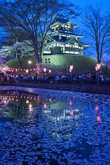 Takadajou Castle (peaceful-jp-scenery) Tags: flower cherry spring sony blossoms   sakura       takadapark a7r   emount  7r ilce7r fe24240mmf3563oss takadajoucastle