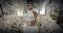 Majesty-Soft Moments (R.I.P Prince) (Ebony (Owner Of Majesty)) Tags: female women feminine femme amd queen fancy femmefatale females hautecouture miss mistress fashionista diva couture domme dainty majesty divas boon queenofhearts womensfashion applemaydesigns 3dwomen ebonycyberstar