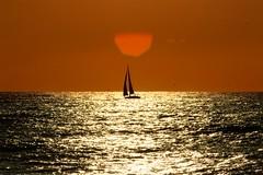 sailing in a golden sea - Tel-Aviv beach (Lior. L) Tags: sea beach silhouette sailboat sailing flare goldensea