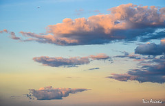Nature painting (TaisAcassia) Tags: brazil sky cloud nature colors brasil nikon natureza colorsinourworld