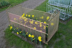 bloembed / flower bed (Ren Mouton) Tags: bed keukenhof narcissen ledikant daphodils