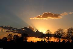 Coucher de soleil  la campagne (escaledith) Tags: soleil nuages campagne contrejour