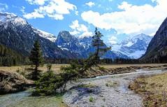 Karwendel Range (Claude@Munich) Tags: alps tree austria tirol sterreich spring pasture alpen plain alp spruce baum tyrol eng tal fichte karwendel ahornboden claudemunich vomp ostalpen rissbach hinterriss bigmapleplain alpineparkkarwendel risbach groserahornboden engalpe