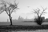 January Skyline (Andy Marfia) Tags: trees winter blackandwhite bw snow chicago water skyline iso100 lakemichigan uptown f8 montroseharbor lakefront 1320sec d7100 1685mm
