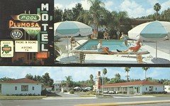 Plumosa Motel - Clearwater, Florida (The Cardboard America Archives) Tags: vintage florida postcard superior motel palmtrees clearwater poolview signview multiview