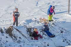 20160116-3197 (Sander Smit / Smit Fotografie) Tags: winter sneeuw delfzijl sneeuwpret slee winterweer