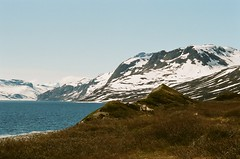 Forbidden Land (IggyRox) Tags: lake snow mountains film nature water beauty norway 35mm reindeer norge europe view empty wildlife hike trail scandinavia jotunheimen vang oppland bygdin