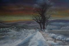 Snowy Moorland (amanda.parker377) Tags: england snow lane bleak moorland treesinlandscape