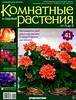 Комнатные и садовые растения от А до Я 41 15