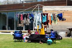 20160126-16-MONA lawns (Roger T Wong) Tags: lawn australia mona tasmania hobart 2016 sony2470 museumofoldandnewart rogertwong sel2470z sonyfe2470mmf4zaosscarlzeissvariotessart sonya7ii sonyilce7m2 sonyalpha7ii