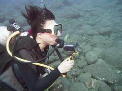 Hachi shooting video (Yuxuan.fishy.Wang) Tags: hawaii us unitedstates scuba diving kailuakona