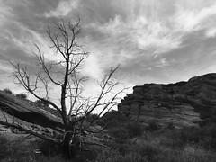 FullSizeRender6 (lnewman333) Tags: park sky blackandwhite tree clouds rocks socal southerncalifornia santaclarita vasquezrocks losangelescounty aguadulcecanyon