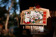 Emas in Gotoku-ji Setagaya  Tokyo (Julien Mailler) Tags: world street travel japan cat asian temple japanese tokyo julien shrine asia religion nippon neko asie manekineko kansai japon ema nihon setagaya japonais nationalgeographic asiatique budhism boudhisme gotokuji lovelyphotos jules1405 unseenasia earthasia mailler tokyote