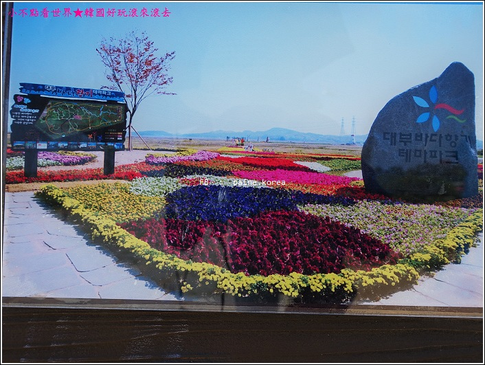大阜島海邊香氣公園 (13).JPG